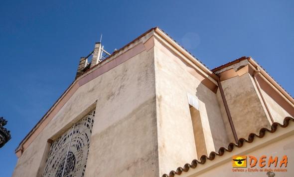 Las cornisas de la iglesia de San José, edificio contiguo al de la Escuela de Idiomas, fueron bloqueadas hace unos años con las chapas que vemos en la foto para evitar que las aves instalasen sus nidos. Antes eliminaron más de 400 nidos de avión común