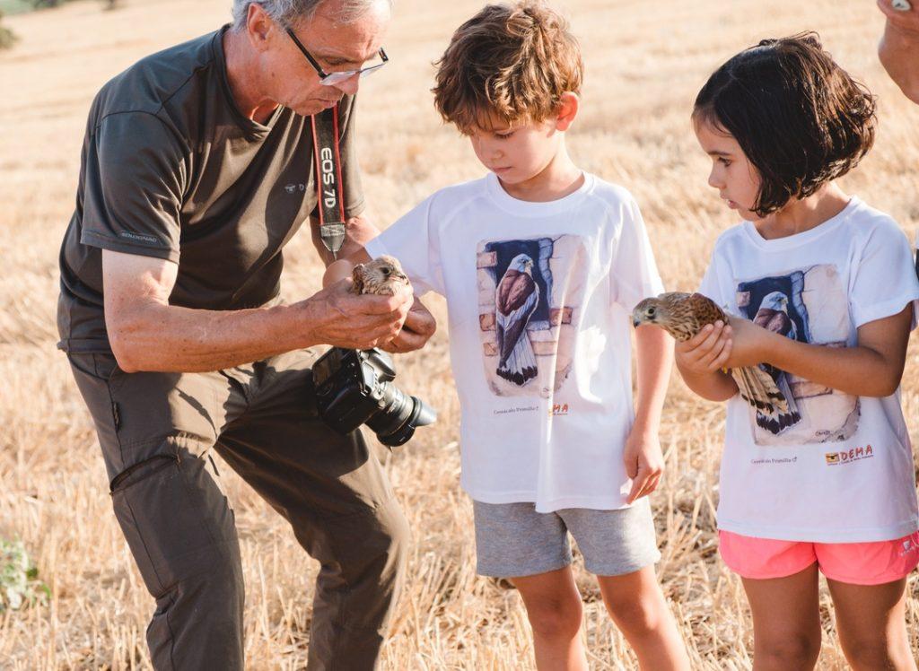 Dos niños cogiendo el cernícalo primilla que van a liberar