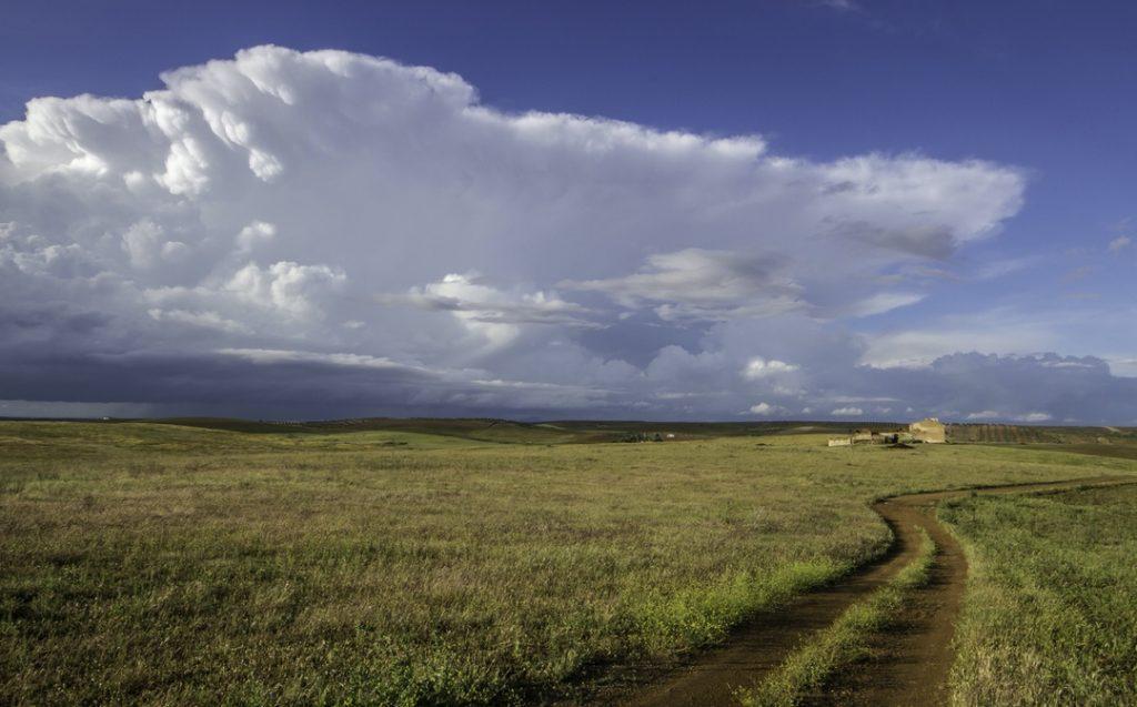 Paisaje de un paraje natural con un camino que llega hasta un cortijo