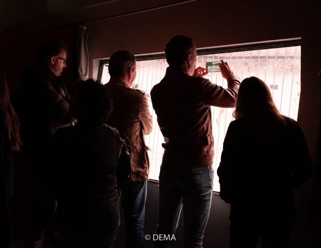 Observación a través de ventanas espías de las visitas del centro de cría en Almendralejo