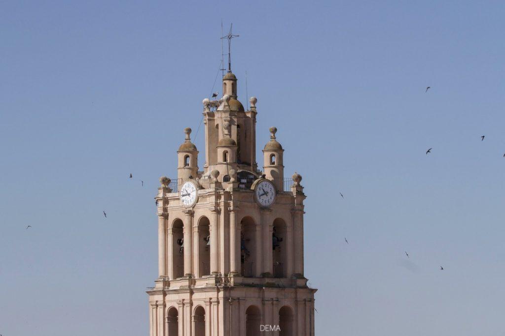 Plano cercano De la Torre De la Iglesia de la Purificación con decenas de cernícalos primilla volando